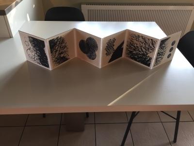 consertina / accordeonboek 1